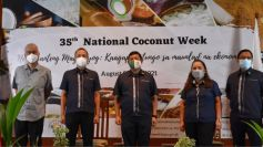 PCA calls for more investments on PH coconut