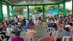 Quezon coco farmers receive ₱3.56M worth of cash and food assistance