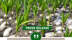 DA-PCA lauds DOE for B5 biodiesel blend plan