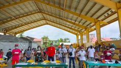 Panukulan Quezon coco farmers receive incentives for intercropping